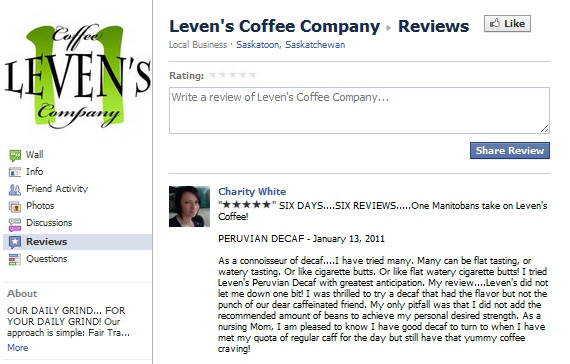 how to write a website review example