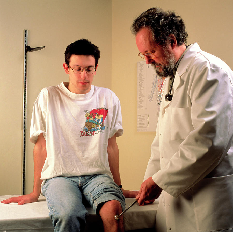 the knee-jerk test is an example of the _____ reflex